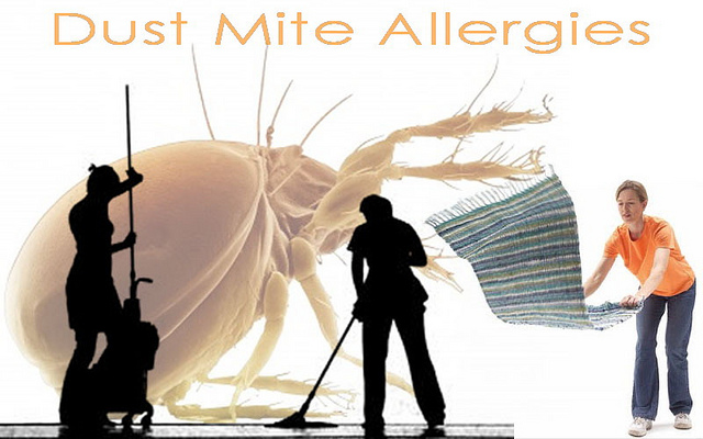 picture : Treatment of Dust Mite Allergies by Adams999 on Flickr.com